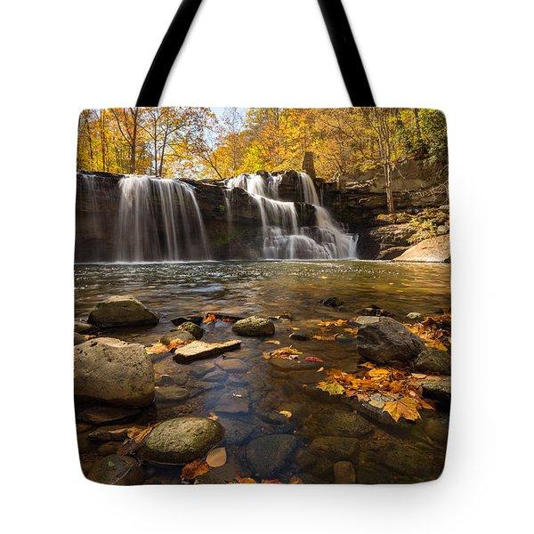 Brush Creek Falls  Tote Bag by Rick Dunnuck