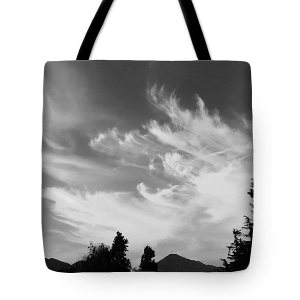 Brush Strokes Tote Bag by Russell Keating