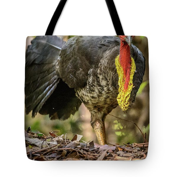 Brush Turkey Tote Bag