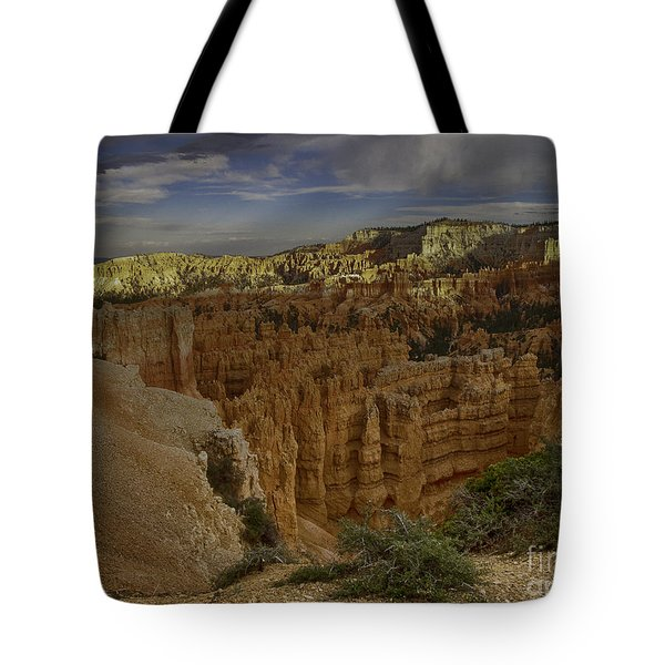 Tote Bag featuring the photograph Bryce Canyon #2 by Anne Rodkin