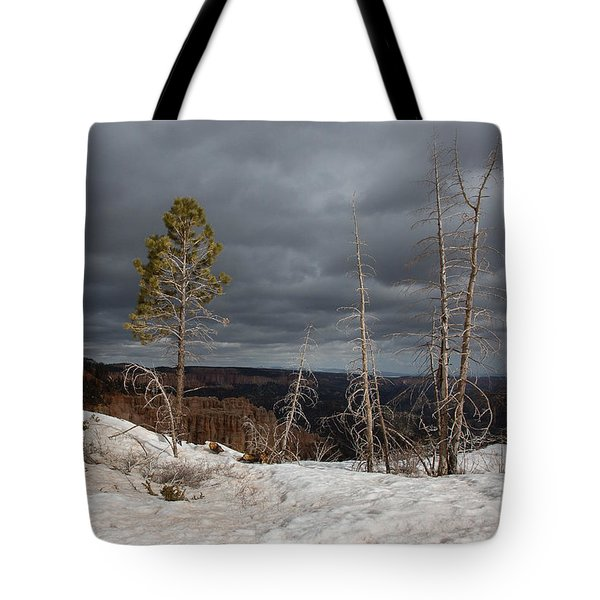 Bryce Canyon Snow Storm 2242 Tote Bag