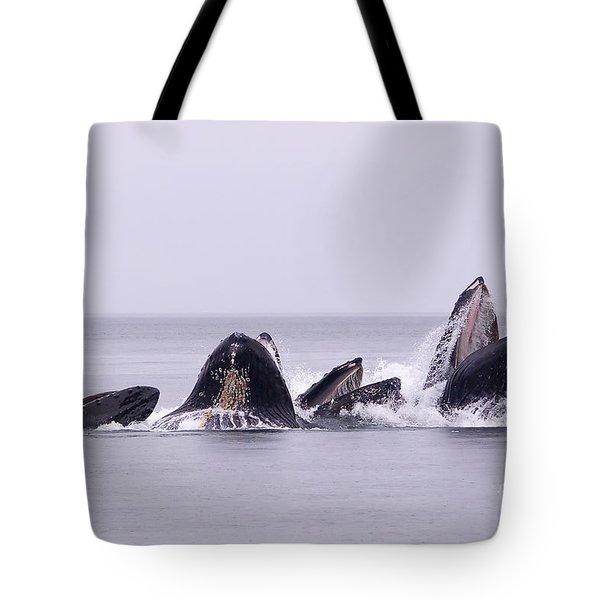 Bubble Feeding Humpbacks Tote Bag by Darcy Michaelchuk