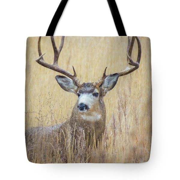 Buck In Snow Tote Bag