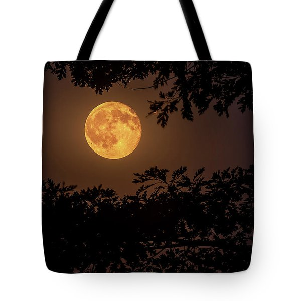 Tote Bag featuring the photograph Buck Moon 2016 by Everet Regal
