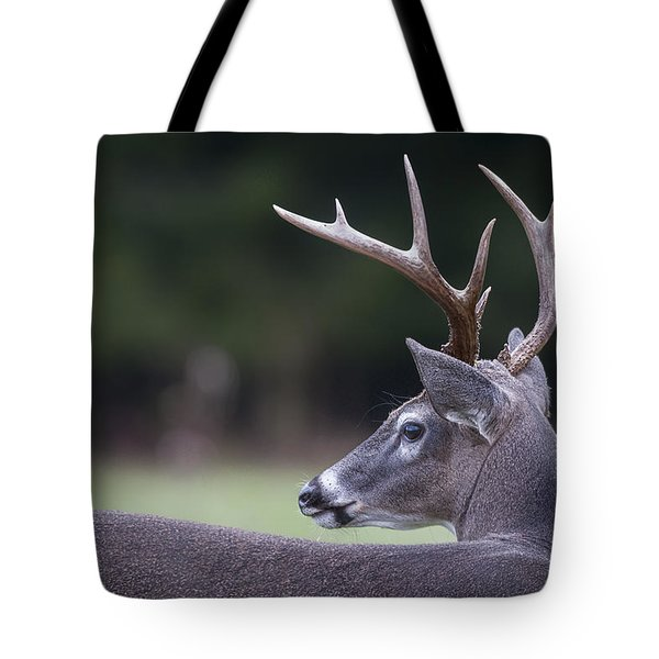 Buck Tote Bag by Tyson and Kathy Smith