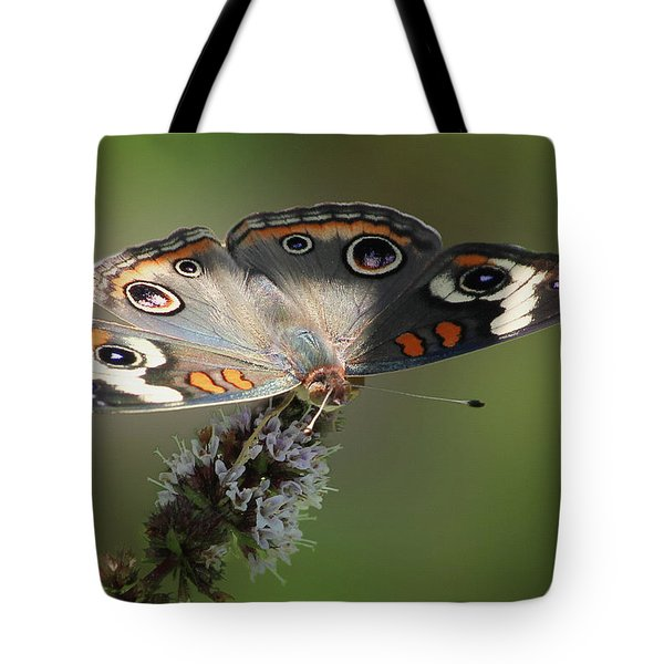 Buckeye Beauty Tote Bag by Anita Oakley