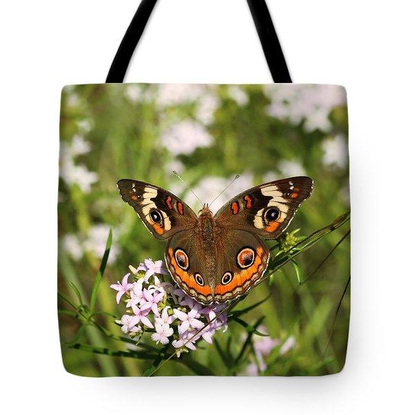 Buckeye Butterfly Posing Tote Bag