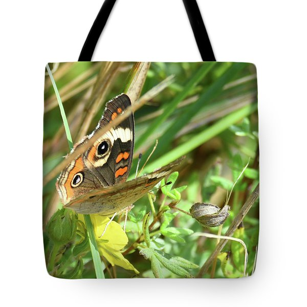 Tote Bag featuring the photograph Buckeye In The Leaves by Sally Sperry