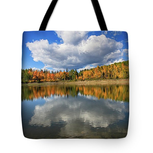 Buckhorn Reflections Tote Bag