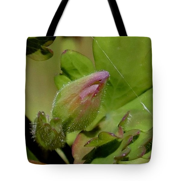Bud And Spider Silk Tote Bag