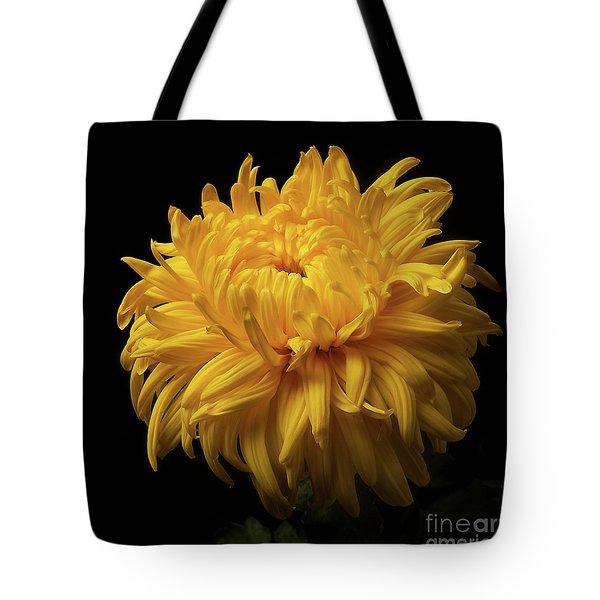 Bud Opening-chrysanthemum 'allison Peace Tote Bag