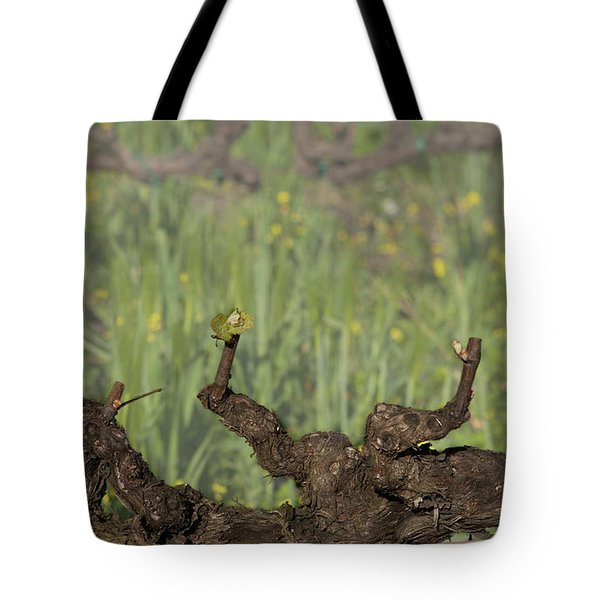 Tote Bag featuring the photograph Budbreak In Carneros by Carol Lynn Coronios