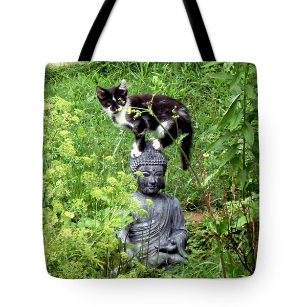 Buddha And Friend Tote Bag by Cynthia Lassiter