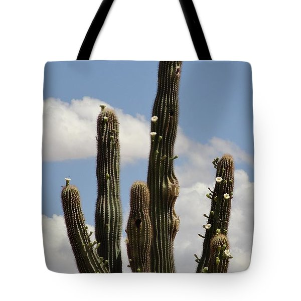 Budding Saguaro Cactus Babies Tote Bag