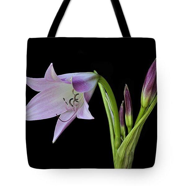 Budding Lily Tote Bag