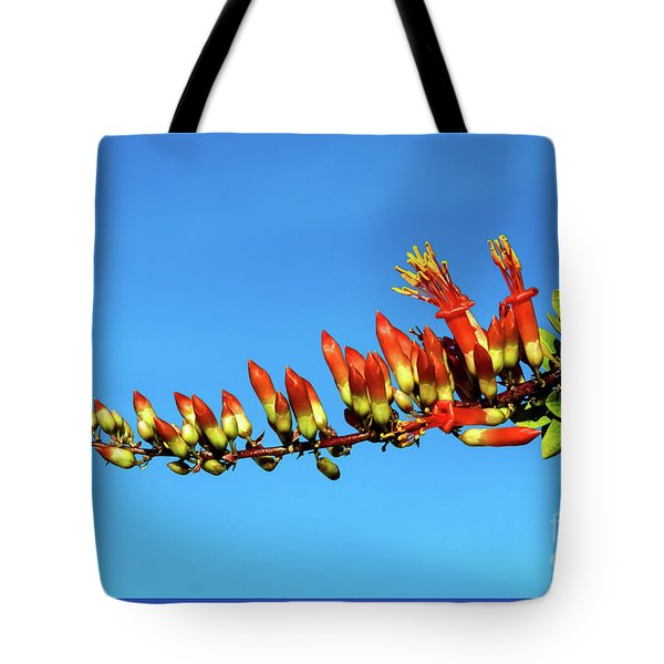 Tote Bag featuring the photograph Budding Ocotillo by Robert Bales