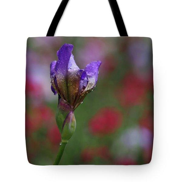 Budding Purple Iris Tote Bag