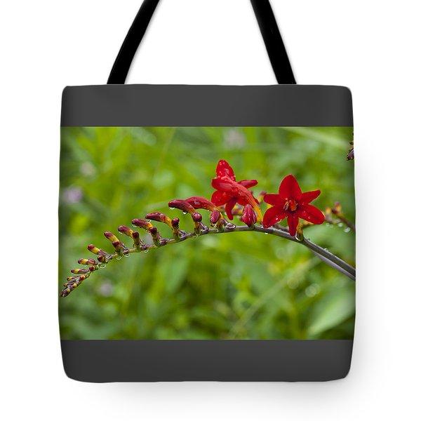 Budding Red Tote Bag