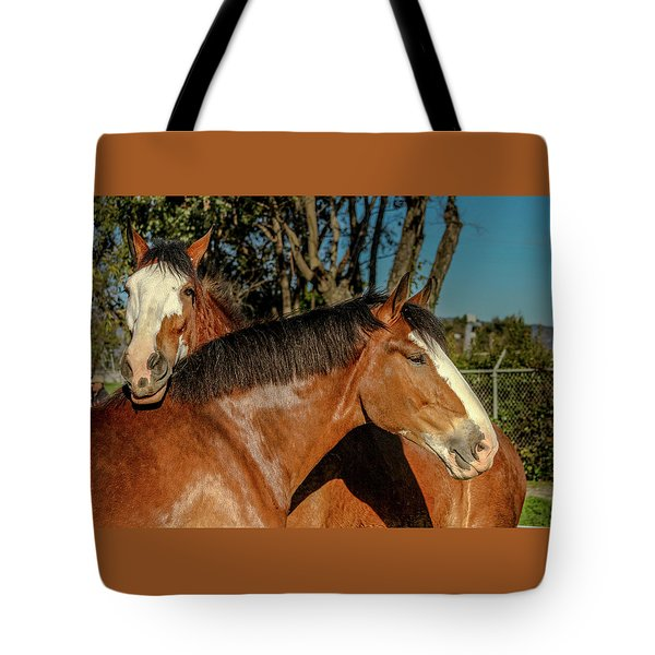 Tote Bag featuring the photograph Budweiser Clydesdales  by Bill Gallagher