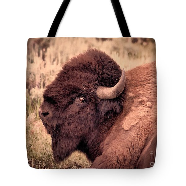 Tote Bag featuring the photograph Buffalo Eye On You by Janice Rae Pariza