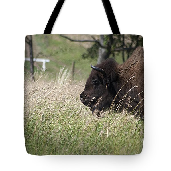 Tote Bag featuring the photograph Buffalo Gal 20120724_378a by Tina Hopkins