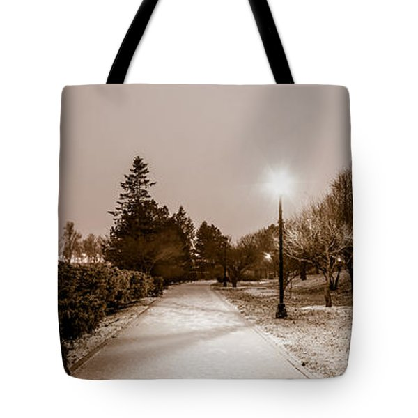 Buffalo History Museum Winter Twilight  Tote Bag by Chris Bordeleau