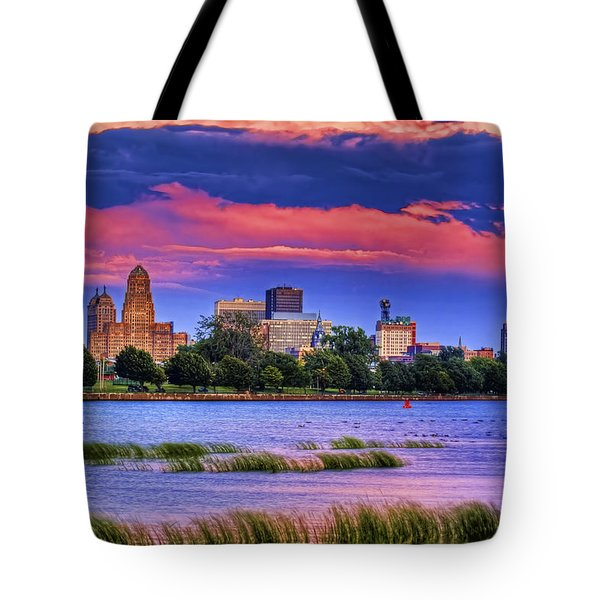 Buffalo In Pastels Tote Bag