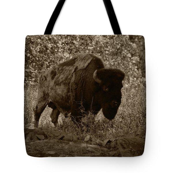 Buffalo Junction Tote Bag by B Wayne Mullins