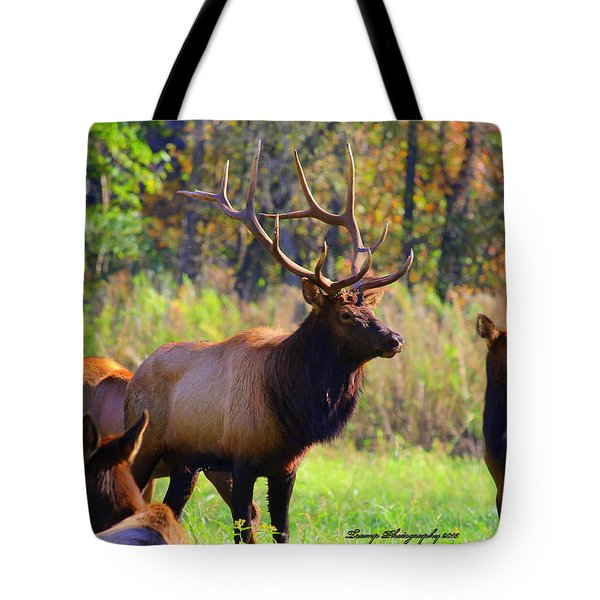Buffalo River Elk Tote Bag