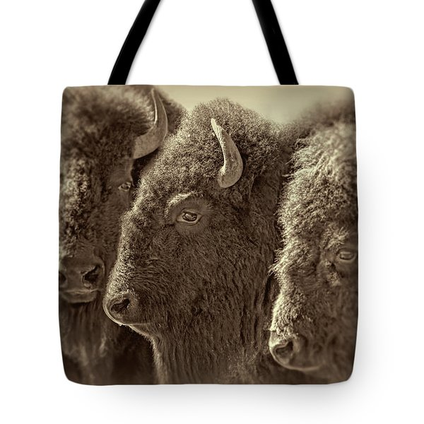 Tote Bag featuring the photograph Trio American Bison Sepia Brown by Jennie Marie Schell