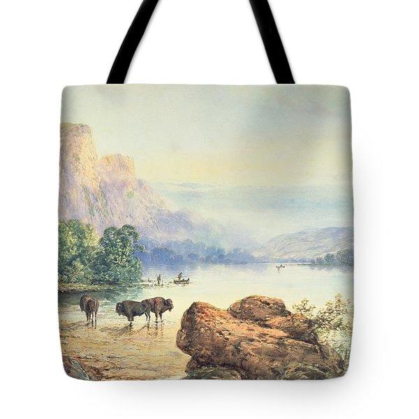 Buffalo Watering Tote Bag