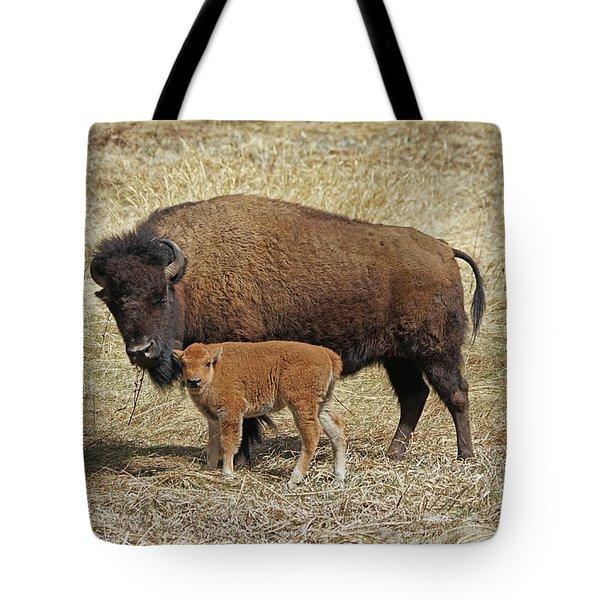 Buffalo With Newborn Calf Tote Bag