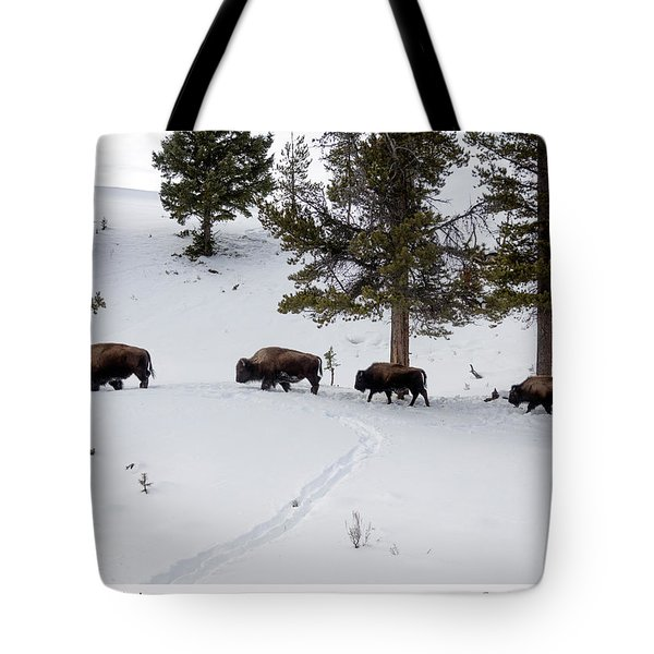 Buffaloes In Yellowstone National Park Tote Bag