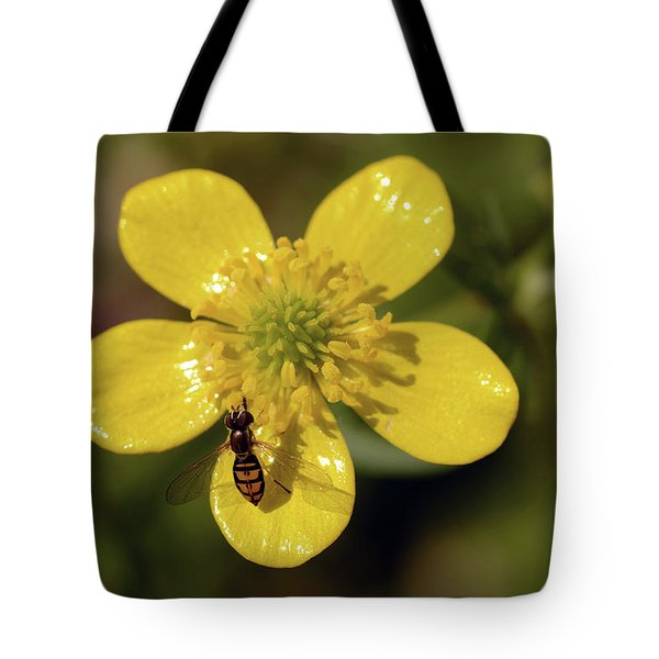 Bug Heaven Tote Bag by Wanda Brandon
