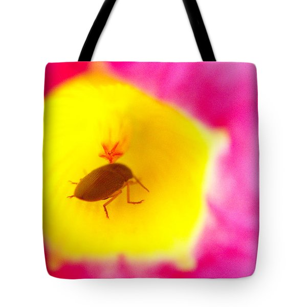 Tote Bag featuring the photograph Bug In Pink And Yellow Flower  by Ben and Raisa Gertsberg