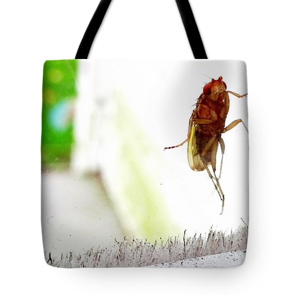 Bug On Window Tote Bag