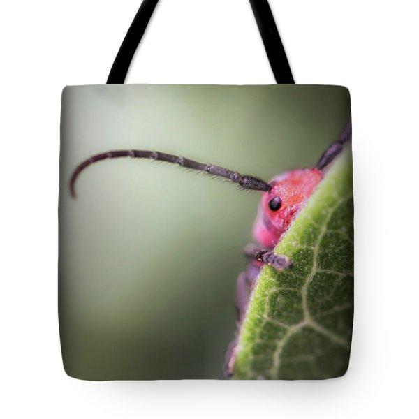 Bug Untitled Tote Bag