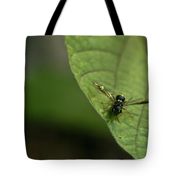 Bugeyed Fly Tote Bag by Douglas Barnett