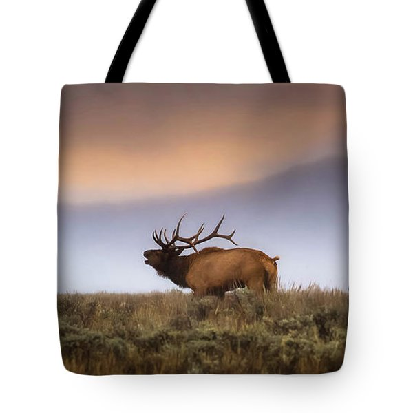 Bugle Boy  Tote Bag by Kelly Marquardt