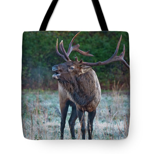 Tote Bag featuring the photograph Bugling Elk by Rick Hartigan