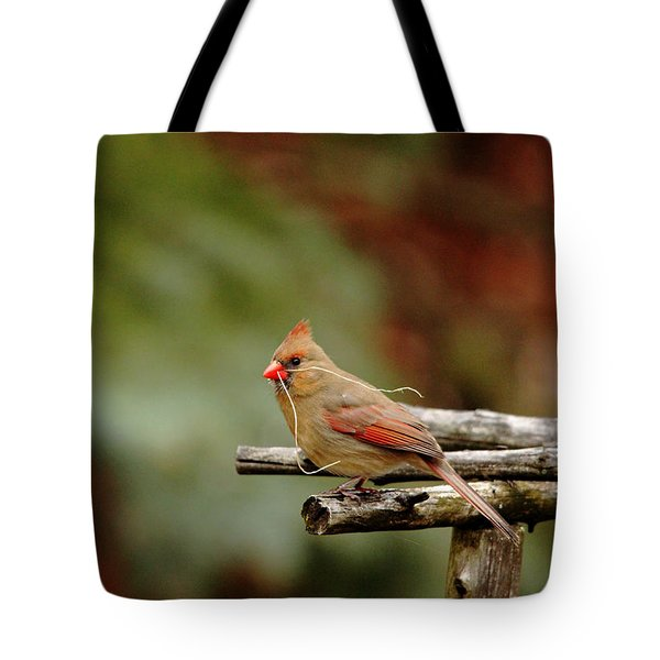 Tote Bag featuring the photograph Building A Home by Debbie Oppermann