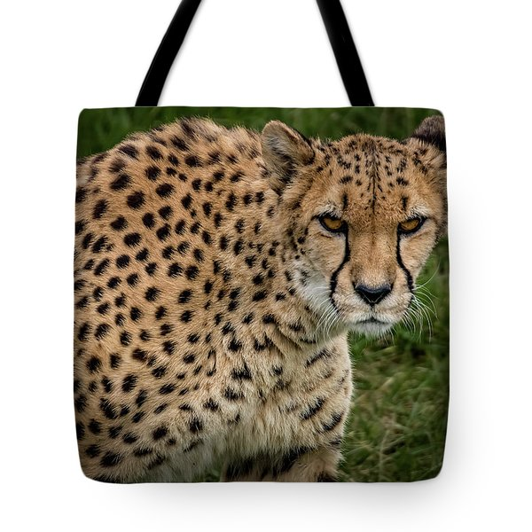 Tote Bag featuring the photograph Built For Speed by Ron Pate