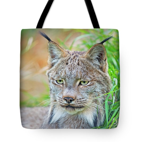 Tote Bag featuring the photograph Built In Hearing Aid.. by Nina Stavlund