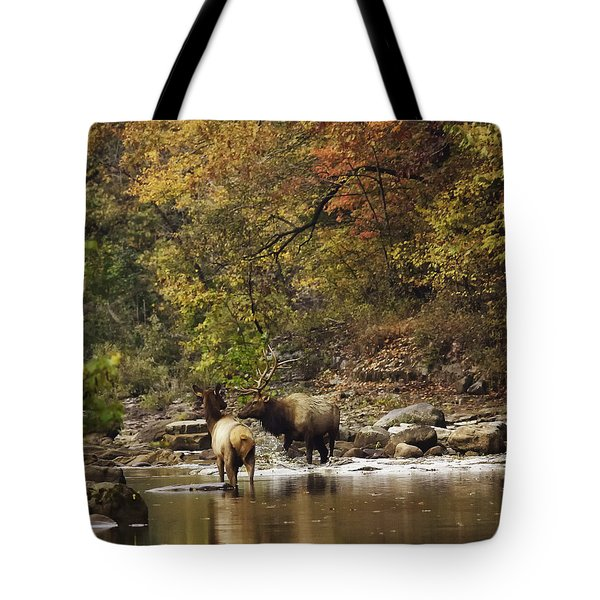 Bull And Cow Elk In Buffalo River Crossing Tote Bag