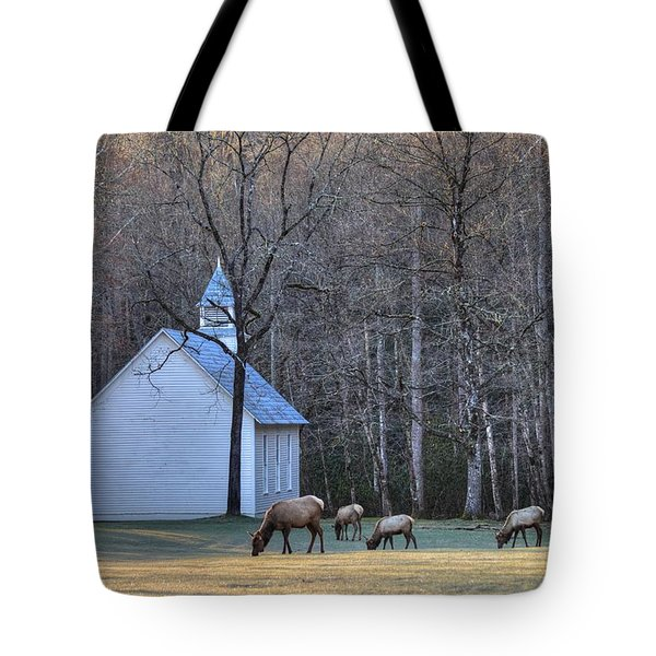 Bull Elk Attending Palmer Chapel  In The Great Smoky Mountains National Park Tote Bag