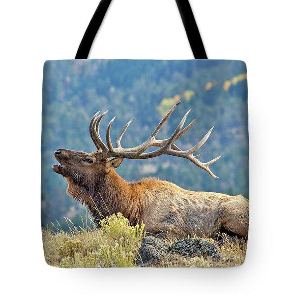 Bull Elk Bugling Tote Bag