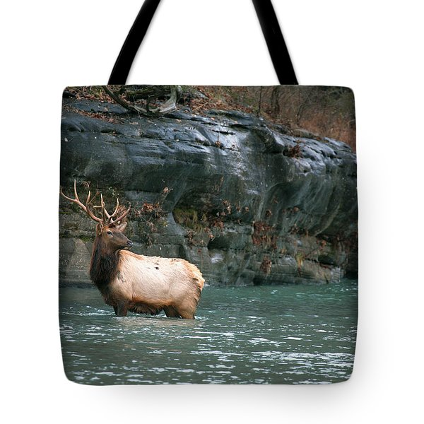 Tote Bag featuring the photograph Bull Elk Crossing The Buffalo River by Michael Dougherty