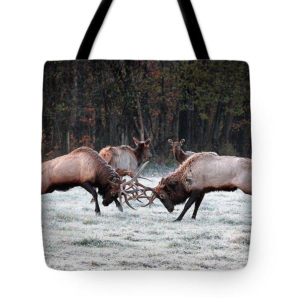Bull Elk Fighting In Boxley Valley Tote Bag