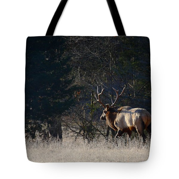 Tote Bag featuring the photograph Bull Elk In Frost by Michael Dougherty