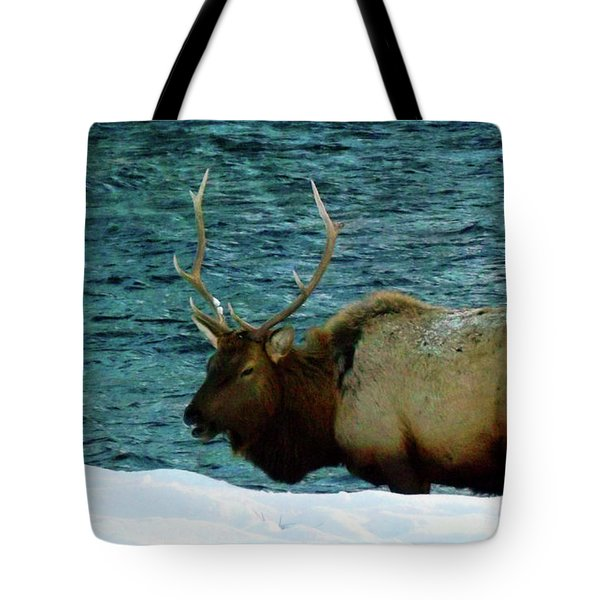 Bull Elk In Winter Tote Bag